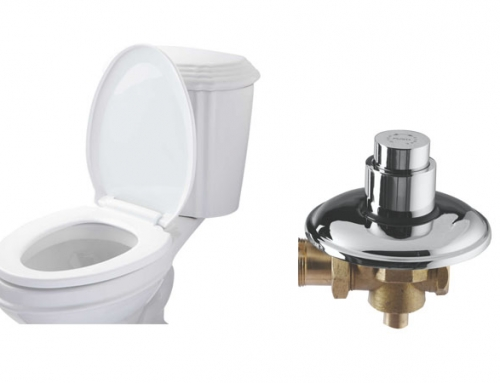 Toilet Seats & Flush Valves